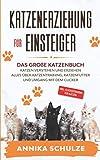Katzenerziehung für Einsteiger: Das große Katzenbuch - Katzen verstehen und...