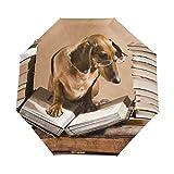 RXYY Tier-Dackel-Hundebuch, faltbar, automatisches Öffnen und Schließen,...