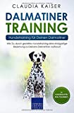 Dalmatiner Training – Hundetraining für Deinen Dalmatiner: Wie Du durch gezieltes...