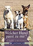 Welcher Hund passt zu mir?: Der Ratgeber vor dem Hundekauf (Cadmos Hundewelt)