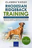 Rhodesian Ridgeback Training – Hundetraining für Deinen Rhodesian Ridgeback: Wie...