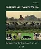 Faszination Border Collie: Die Ausbildung der Arbeitshunde am Vieh (Das besondere...