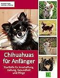 Chihuahuas für Anfänger: Starthilfe für Anschaffung, Haltung, Gesundheit und...