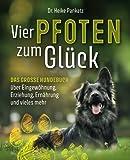 Vier Pfoten zum Glück: Das grosse Hundebuch über Eingewöhnung, Erziehung,...