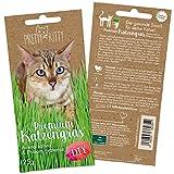 PRETTY KITTY Premium Katzengras Saatmischung: 1 Beutel je 25g Katzengras Samen für...